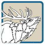 Elk Patterns by L S Irish