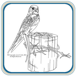 Birds of Prey Wood Carving Patterns
