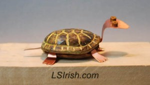 box turtle wood carving