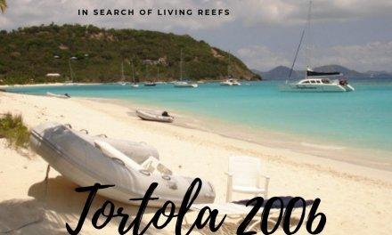 Tortola 2006