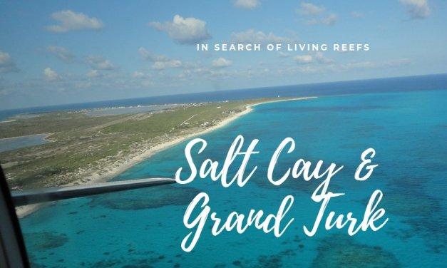 Salt Cay & Grand Turk