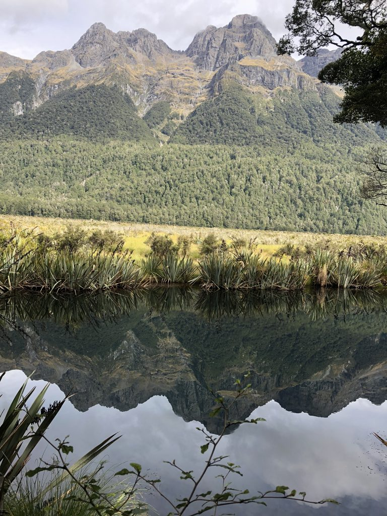 Mirror Lakes, Milford highway, Fiordland, New Zealand