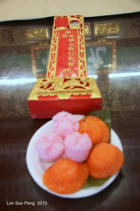 Tung Chek2913 031-001
