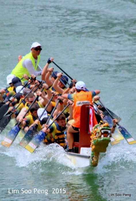 1-Dragon Boat 2015 280