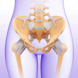 Image displaying the anatomy of the pelvic floor. Even if you are unable to use dilators, you can benefit from learning how to relax the pelvic floor muscles in physiotherapy.