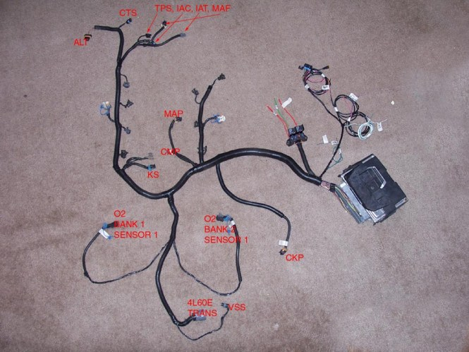 ls1 standalone wiring harness diagram ls1 image ls wiring harness rework ls auto wiring diagram database on ls1 standalone wiring harness diagram