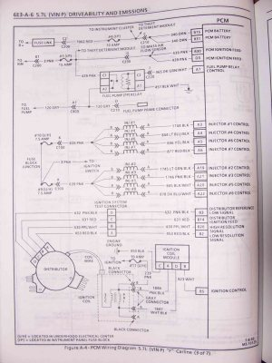 Wiring Diagram For 1995 Camaro Lt1 Engine In | Wiring Library
