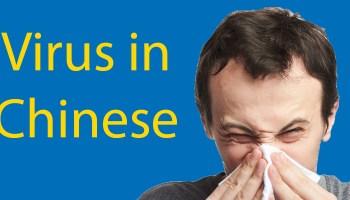 virus in Chinese