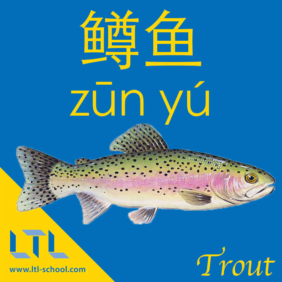 Trout in Chinese