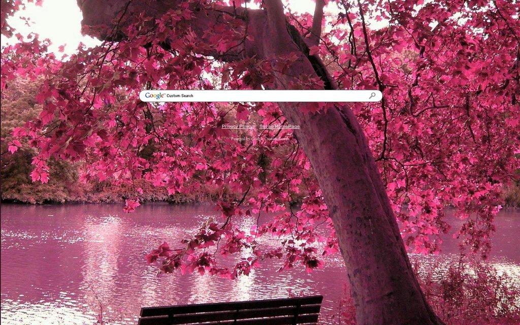 Nature Amp Scenery Google Themes