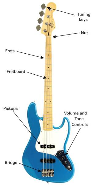 The Bass Guitar  Learn To Play Music Blog