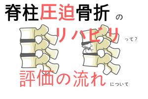 脊柱圧迫骨折の評価の流れ