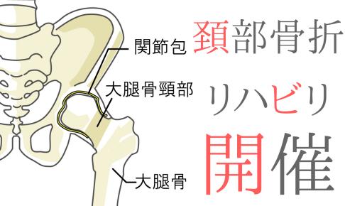 触診から紐解く大腿骨頚部骨折の評価とアプローチ~開催報告~