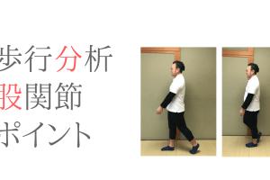 ポイントの多い歩行分析を股関節の動きから考えてみた