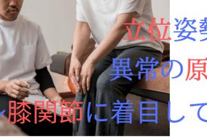 立位姿勢 異常の原因 ~膝関節に着目して~