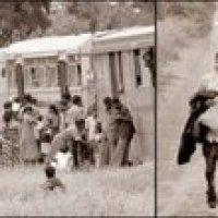 Auslands-Tamilen Initiative: LTTE ist immun gegen internationalen Druck