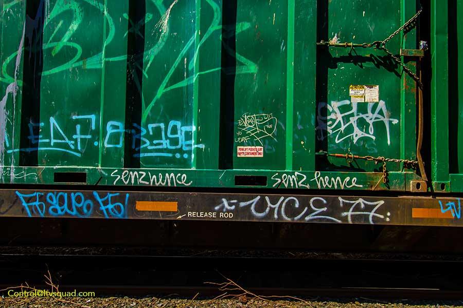IMG_8952
