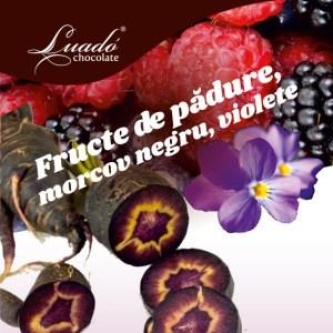 Sorbet de fructe de pădure, morcov negru și violete