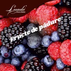 Sorbet artizanal cu fructe de pădure