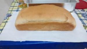 IMG 20151101 213309793 300x169 - Receita de pão caseiro sem ovo