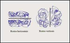 rostos1