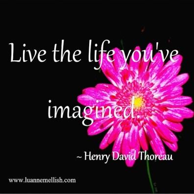 life_you_imagine