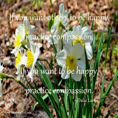 practice_compassion