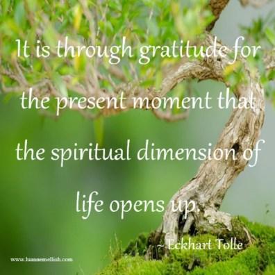 gratitude_present