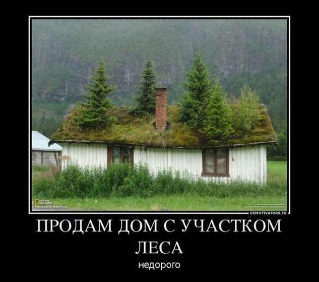Нежный юмор для девушек и женщин. Подборка картинок и фото lublusebya-lublusebya-58190510052019-1 картинка lublusebya-58190510052019-1