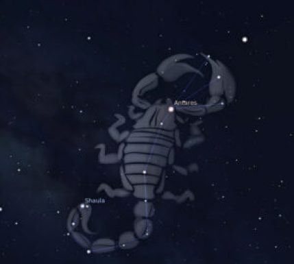 scorpion august2015