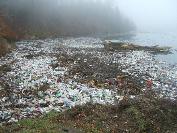 Plastic Bottle Beach