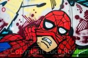 graffiti in rue deyonez (9)