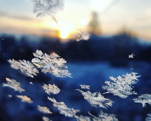 Calisthenics im Winter