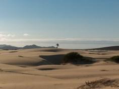 Deserto di Viana by Corrado Alisonno (Flikr;Attribution-NonCommercial-ShareAlike 2.0 Generic (CC BY-NC-SA 2.0