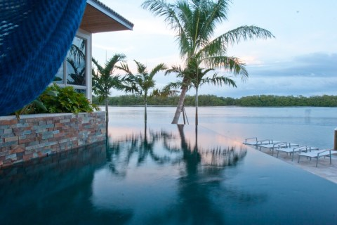 Infinity edge pool with tropical palms and hammock