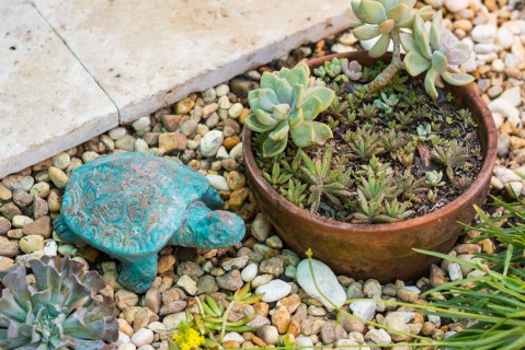 custom-landscaping-Swimming-Pool-Nokomis-5224