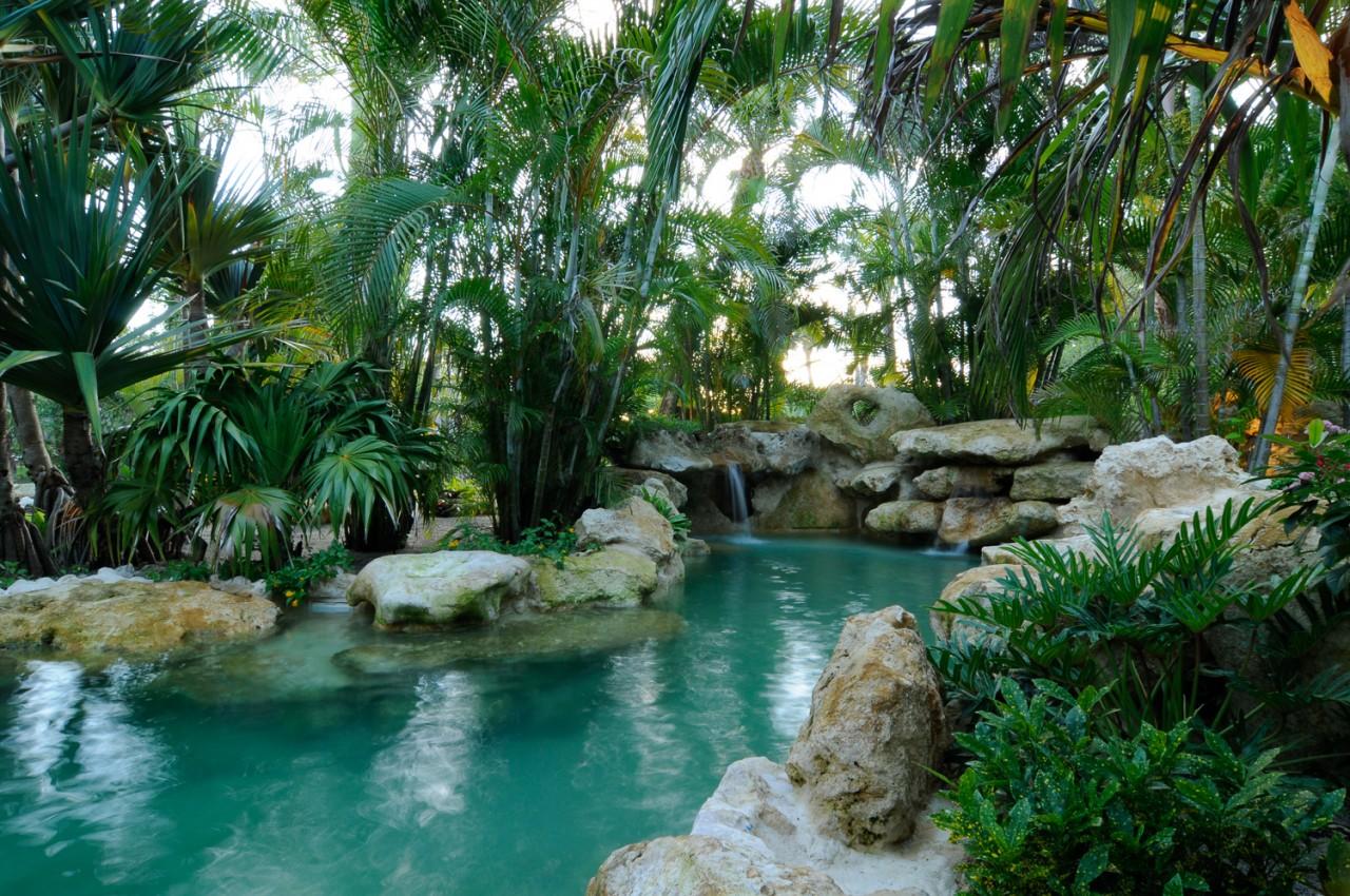 Lagoon Tropical Island: Island Oasis Limestone Lagoon