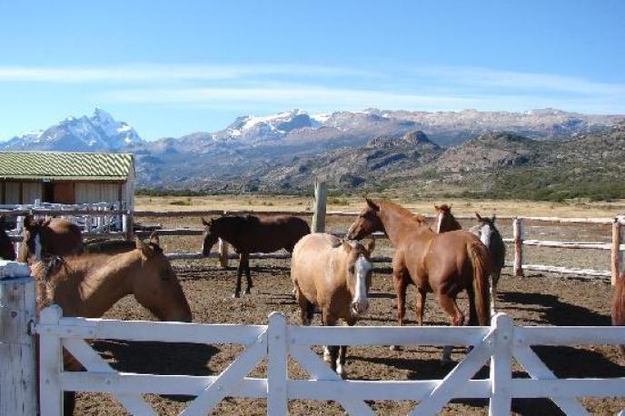 Caballeriza Estancia Alice El Calafate, Patagonia Argentina