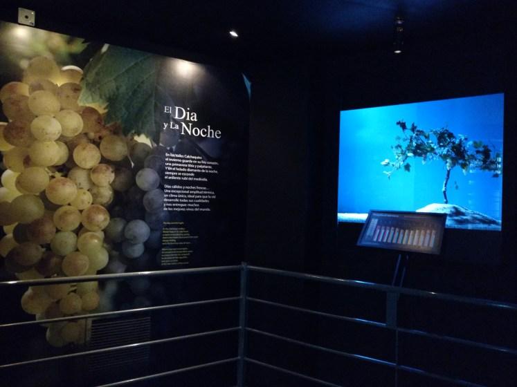Museo de la VID