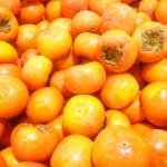 柿の大量消費におすすめ!食べきれない時の長持ちする活用法と食べ方