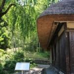 巾着田の周辺の観光スポット!古民家や公園、帰りに寄りたい所をご紹介!