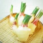 新生姜を大量消費!おすすめの食べ方や日持ちするレシピをご紹介