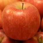 美味しくないりんごの食べ方 まずい時は美味しく食べる方法で消費しよう!