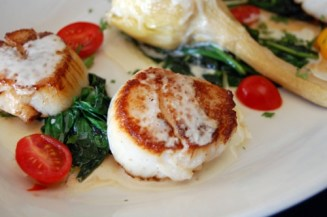 giant-scallop