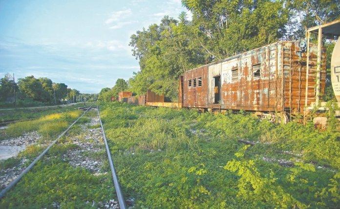 Comprarán 130 hectáreas para obras del Tren Maya