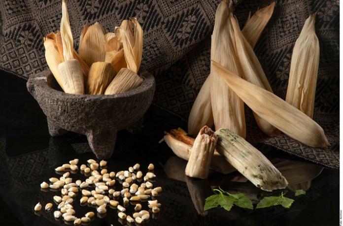 Las formas del maíz