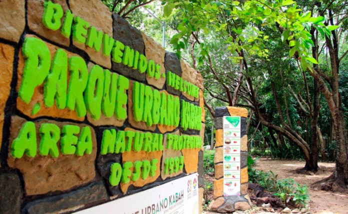 A consulta, manejo del Parque Kabah