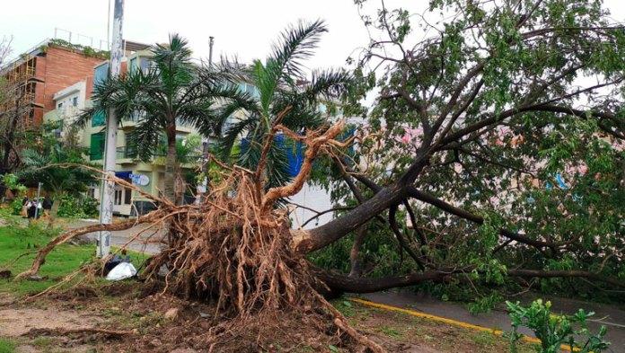 Atendieron 258 llamadas de auxilio durante huracán Zeta