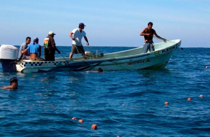 Advierten 'colapso' en industria pesquera