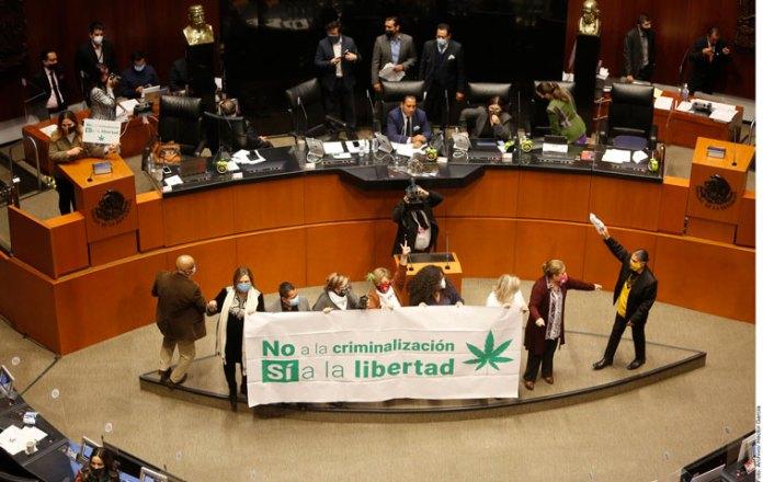 Veta Ley Cannabis a grandes empresas